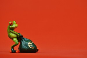 Einkommensdisclaimer frog-1250485_1920